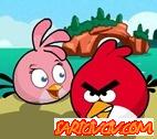 Angry Birds Domuz Avı Oyunu