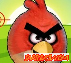 Angry Birds Nişancısı Oyunu