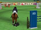 At Eğitmeni Antreman