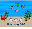 Balık Sayma