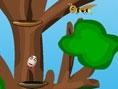Yumurta Ağaç Tırmanma