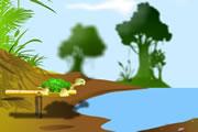 Kaplumbağa Fırlat
