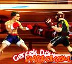 Gerçek Dövüş Oyunu