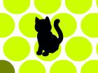 Kedi Sıkıştırma