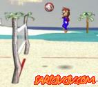 Mario Voleybol Oyunu