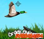 Ördek Avıcısı Oyunu