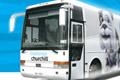 Otobüs 403