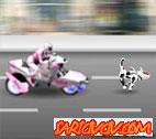 Power Rangers ve Köpeği Oyunu