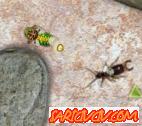 Savaşçı Böcek Oyunu