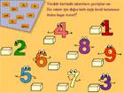 Sayıları Öğrenme