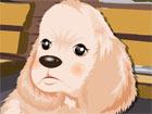 Süs Köpeği 2 Giydir