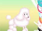 Süs Köpeği Giydir