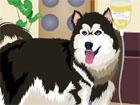 Süslü Kurt Köpeği
